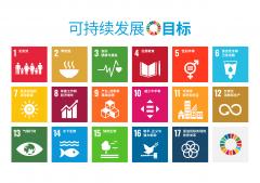 首届可持续发展教育与儿童友好综合发展研讨会